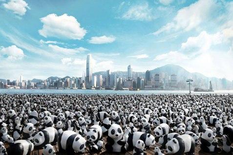 street-marketing-1600-pandas-hong-kong-piwee