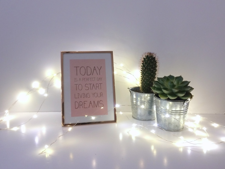 haul décoration shopping mini cactus cadre primark rose gold cuivre guirlande festilight illuminations