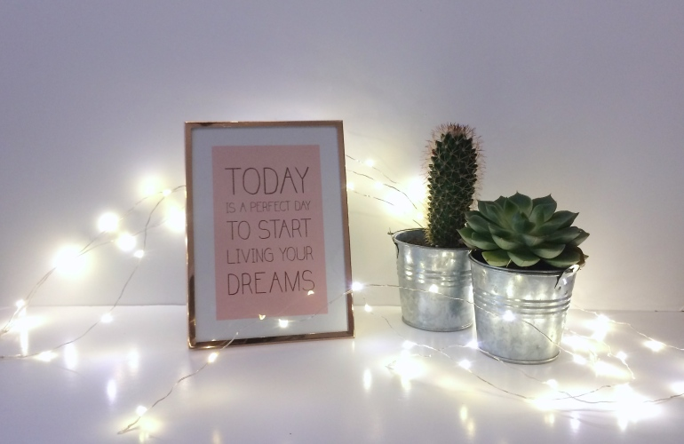 haul décoration shopping mini cactus cadre primark rose gold cuivre guirlande festilight illuminations