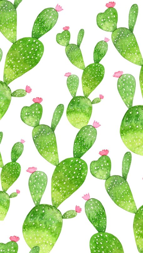 background-multi-cactus-mood