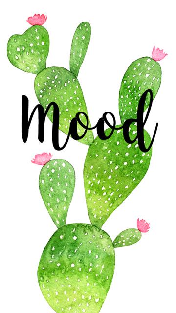 insta-cactus-mood-2.jpg