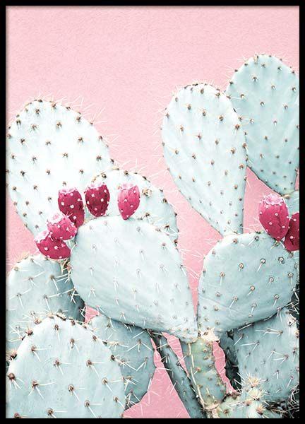 desenio décoration site affiches cadres tendance cactus rose