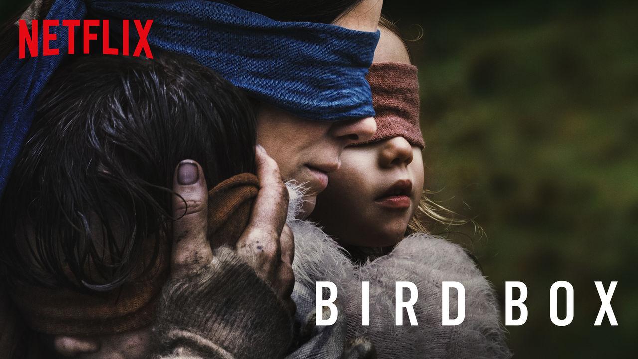 bird-box-wide.jpg
